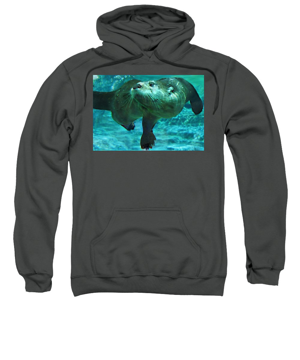 Animal Sweatshirt featuring the photograph River Otter by Steve Karol