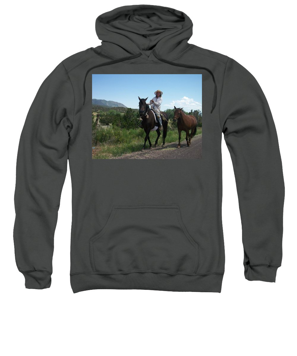 Horses Sweatshirt featuring the photograph Roadside Horses by Anita Burgermeister