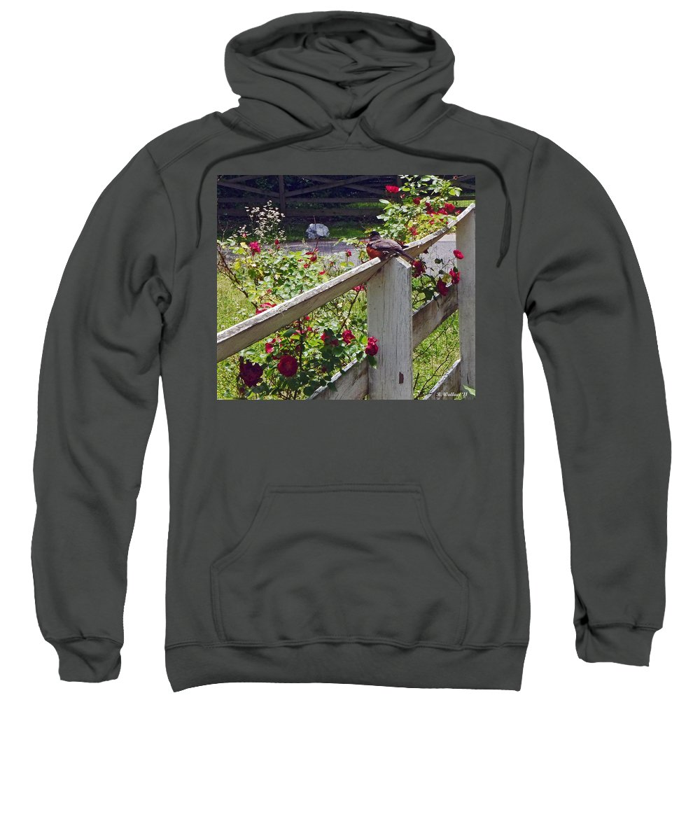 2d Sweatshirt featuring the photograph Robin And Roses by Brian Wallace