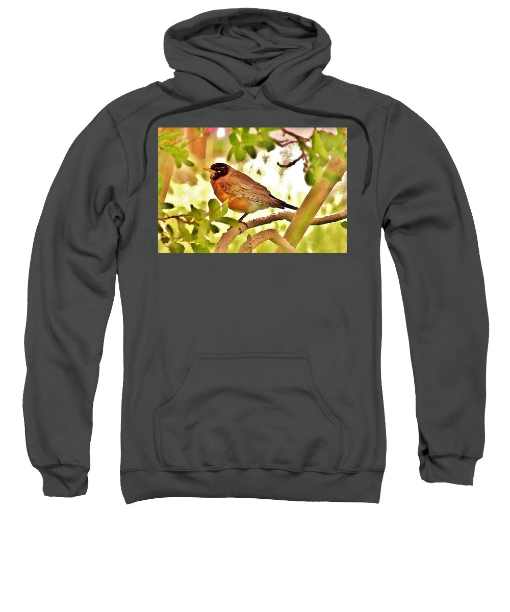 Sweatshirt featuring the photograph Robin In Tree by Kim Bemis