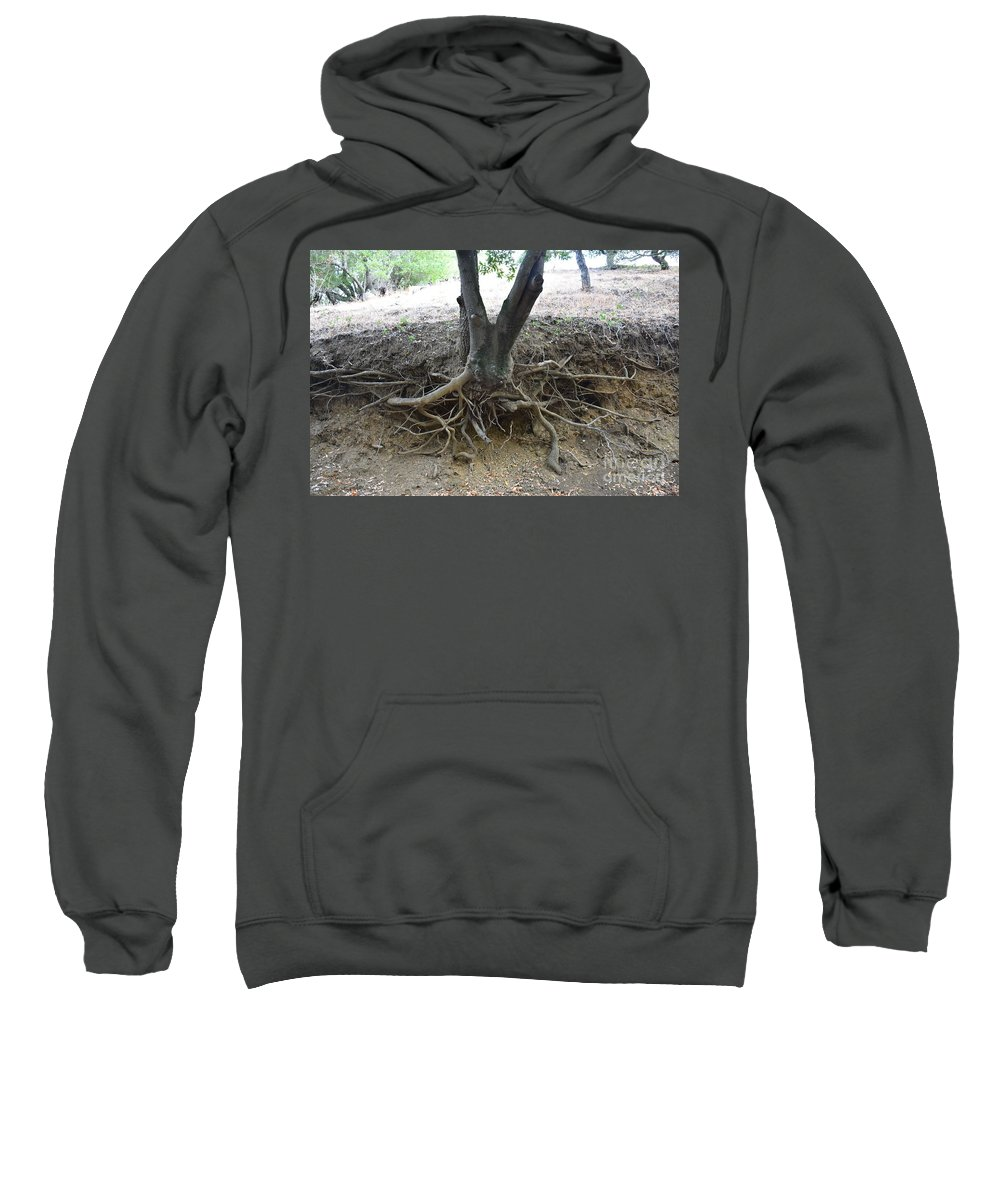 Tree Sweatshirt featuring the photograph Roots by Suzanne Leonard