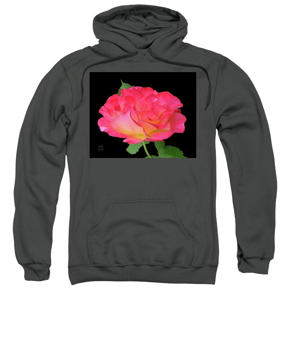 Cutout Sweatshirt featuring the photograph Rose Blushing Cutout by Shirley Heyn