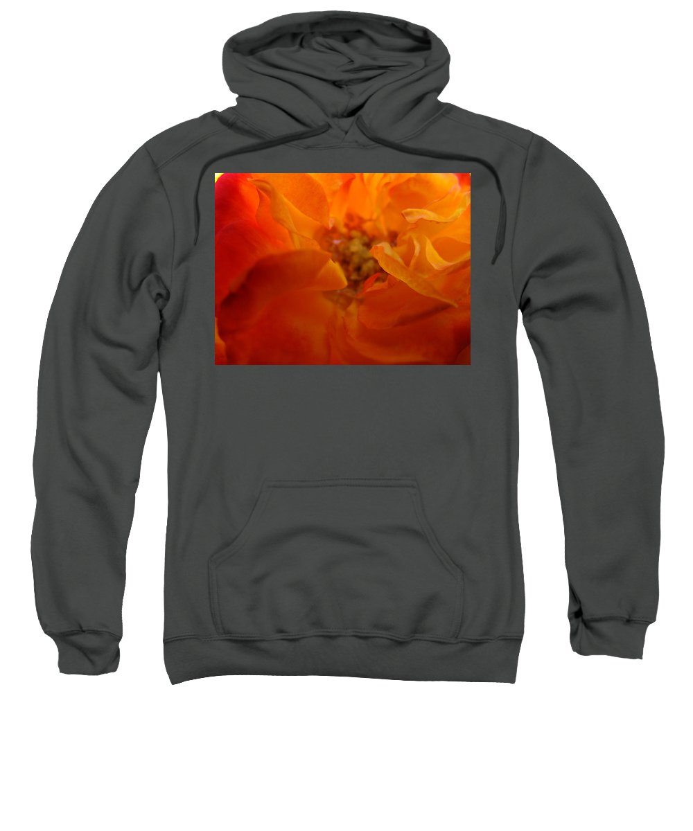Rose Sweatshirt featuring the photograph Rose Flower Orange Glowing Rose Giclee Baslee Troutman by Baslee Troutman