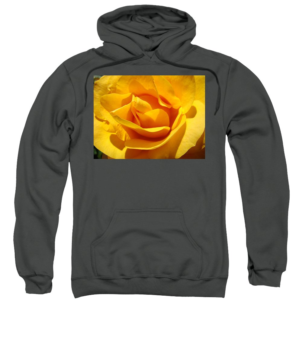 Rose Sweatshirt featuring the photograph Rose Flower Orange Yellow Roses 1 Golden Sunlit Rose Baslee Troutman by Baslee Troutman