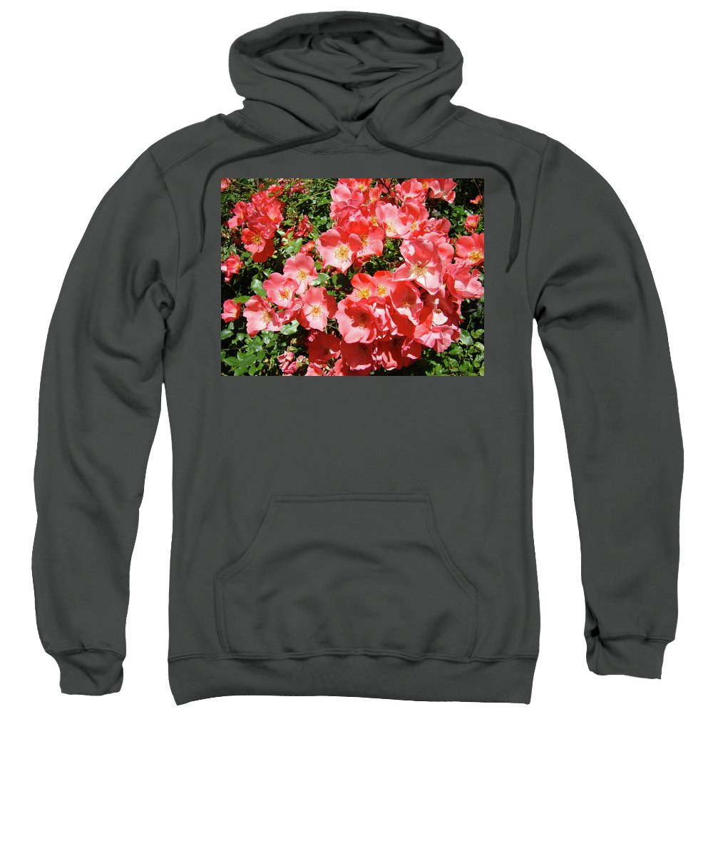 Rose Sweatshirt featuring the photograph Rose Garden Pink Roses Botanical Landscape Baslee Troutman by Baslee Troutman