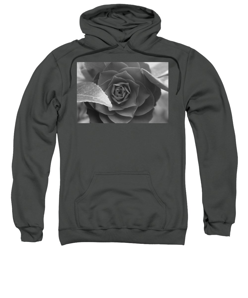 Rose Sweatshirt featuring the photograph Rose In Black by Lauri Novak