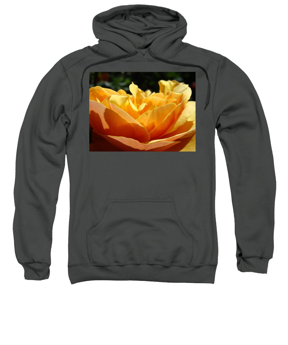 Rose Sweatshirt featuring the photograph Rose Sunlit Orange Rose Garden 7 Rose Giclee Art Prints Baslee Troutman by Baslee Troutman