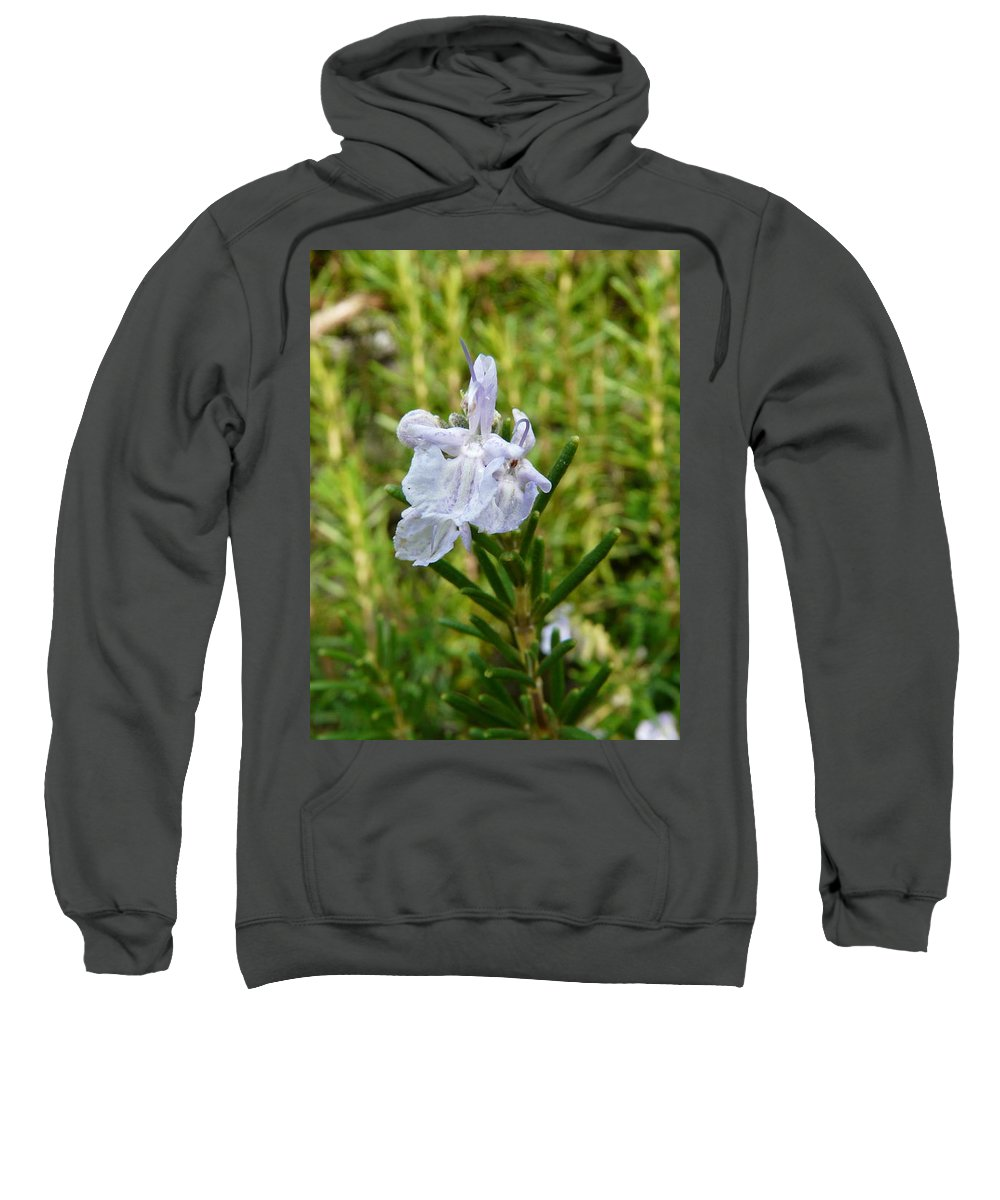 Rosemary Sweatshirt featuring the photograph Rosemary Bloom by Valerie Ornstein