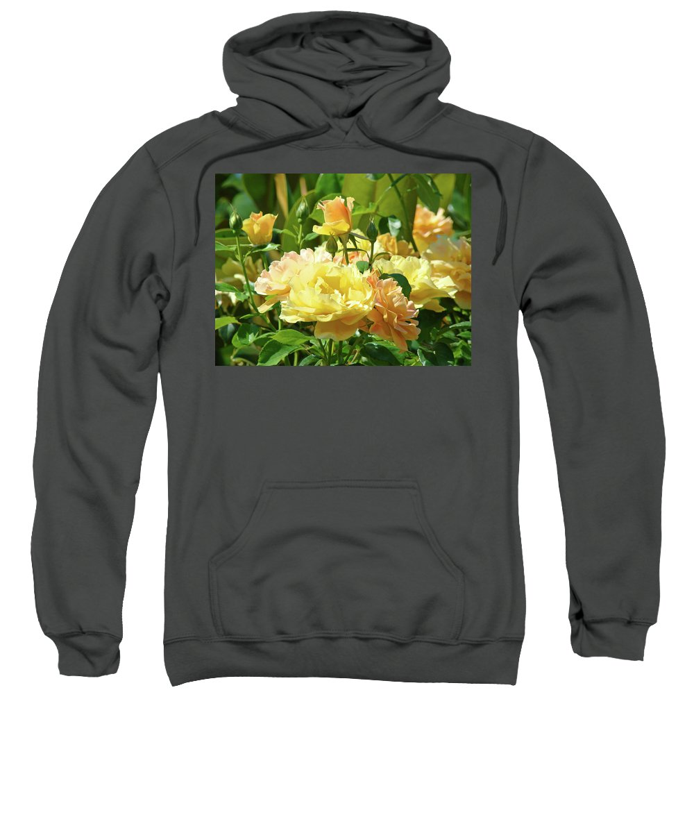 Rose Sweatshirt featuring the photograph Roses Art Prints Rose Garden Flowers Giclee Prints Baslee Troutman by Baslee Troutman