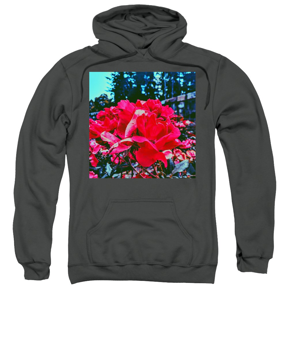 Roses Sweatshirt featuring the photograph Roses At Mont Alto by Paul Kercher