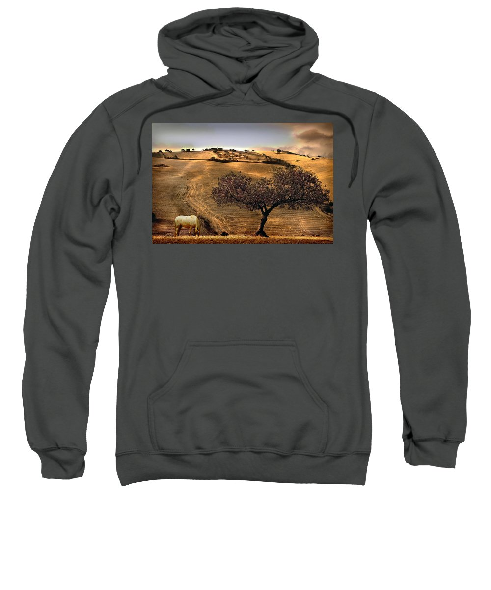 Landscape Sweatshirt featuring the photograph Rural Spain View by Mal Bray