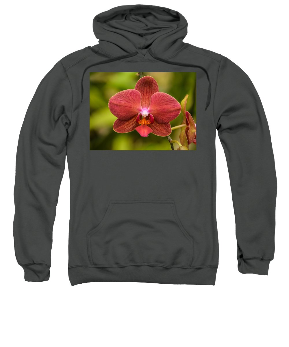 Orchid Sweatshirt featuring the photograph Rusty Orchid by Robert Coffey