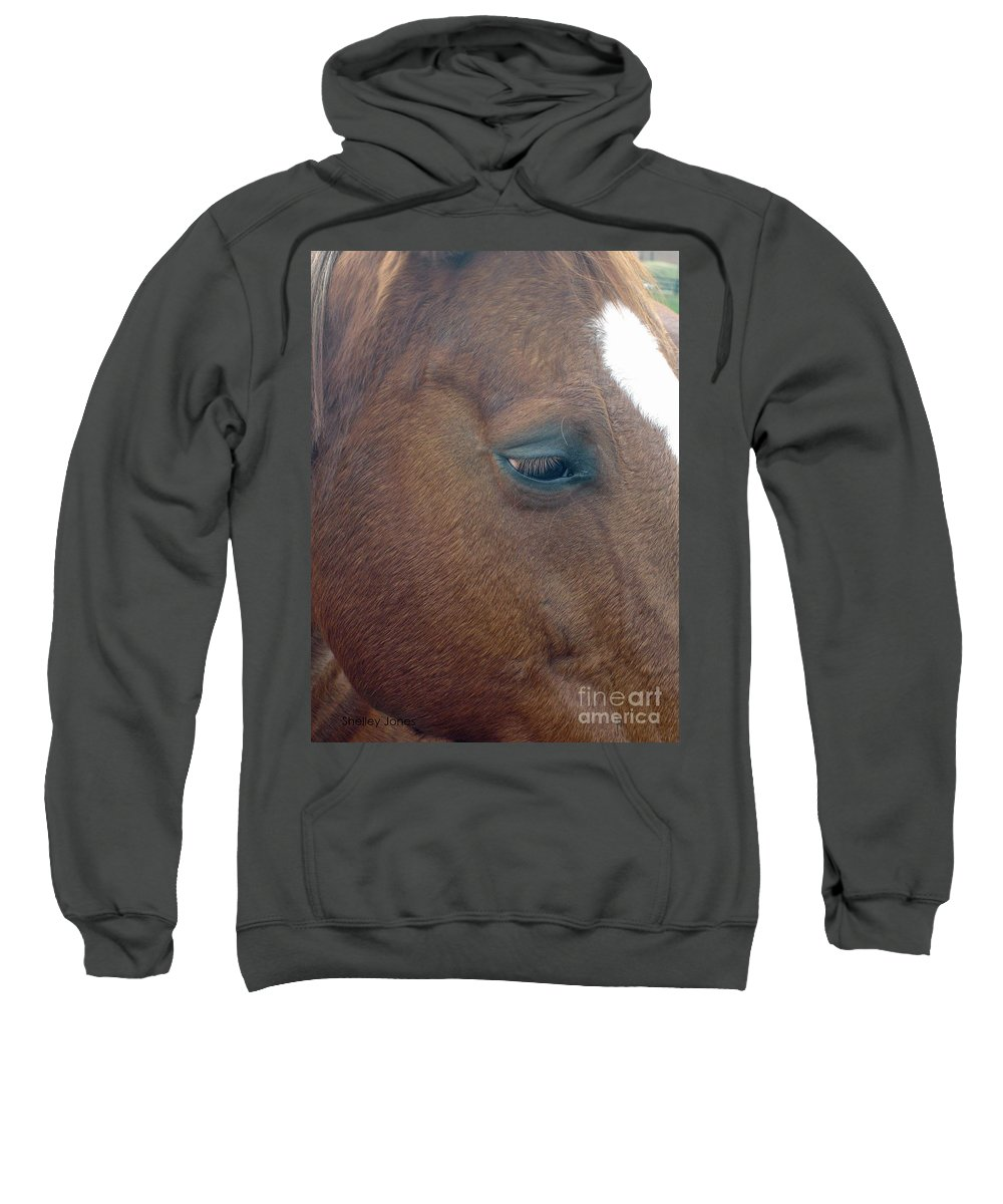 Horse Sweatshirt featuring the photograph Sad Eyed by Shelley Jones