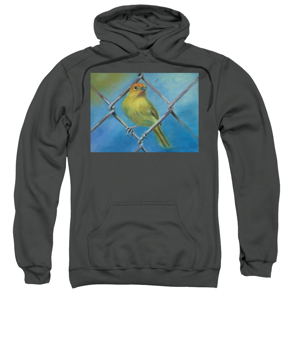 Bird Sweatshirt featuring the painting Safron Finch by Ceci Watson
