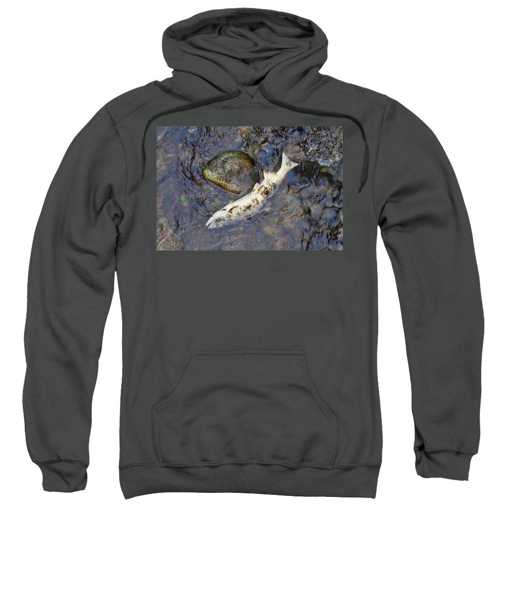 Salmon Sweatshirt featuring the photograph Salmon Run by Louise Heusinkveld