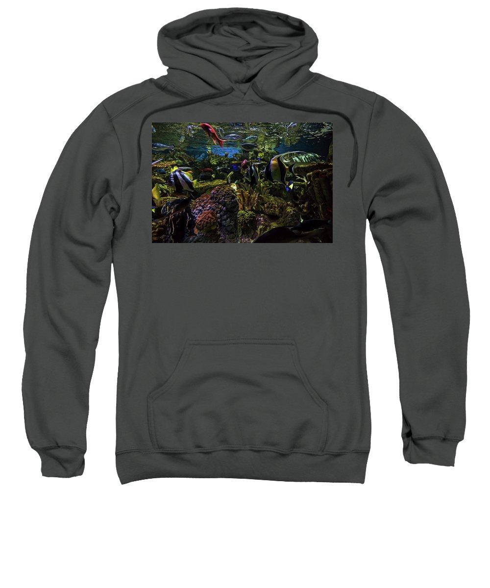 Aquarium Sweatshirt featuring the photograph Salty Color by Janet Fikar