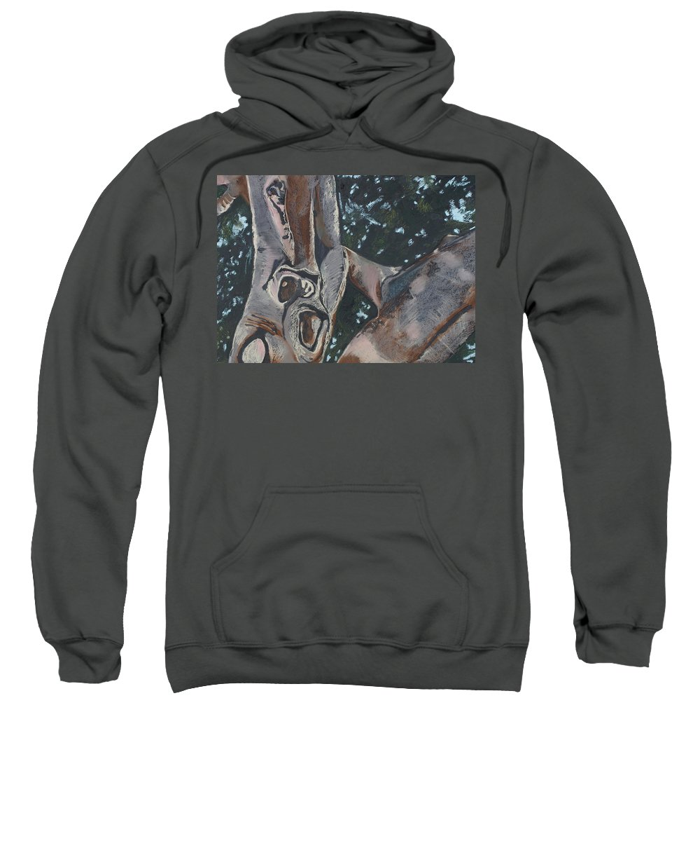 Contemporary Tree Sweatshirt featuring the drawing San Diego Zoo by Leah Tomaino