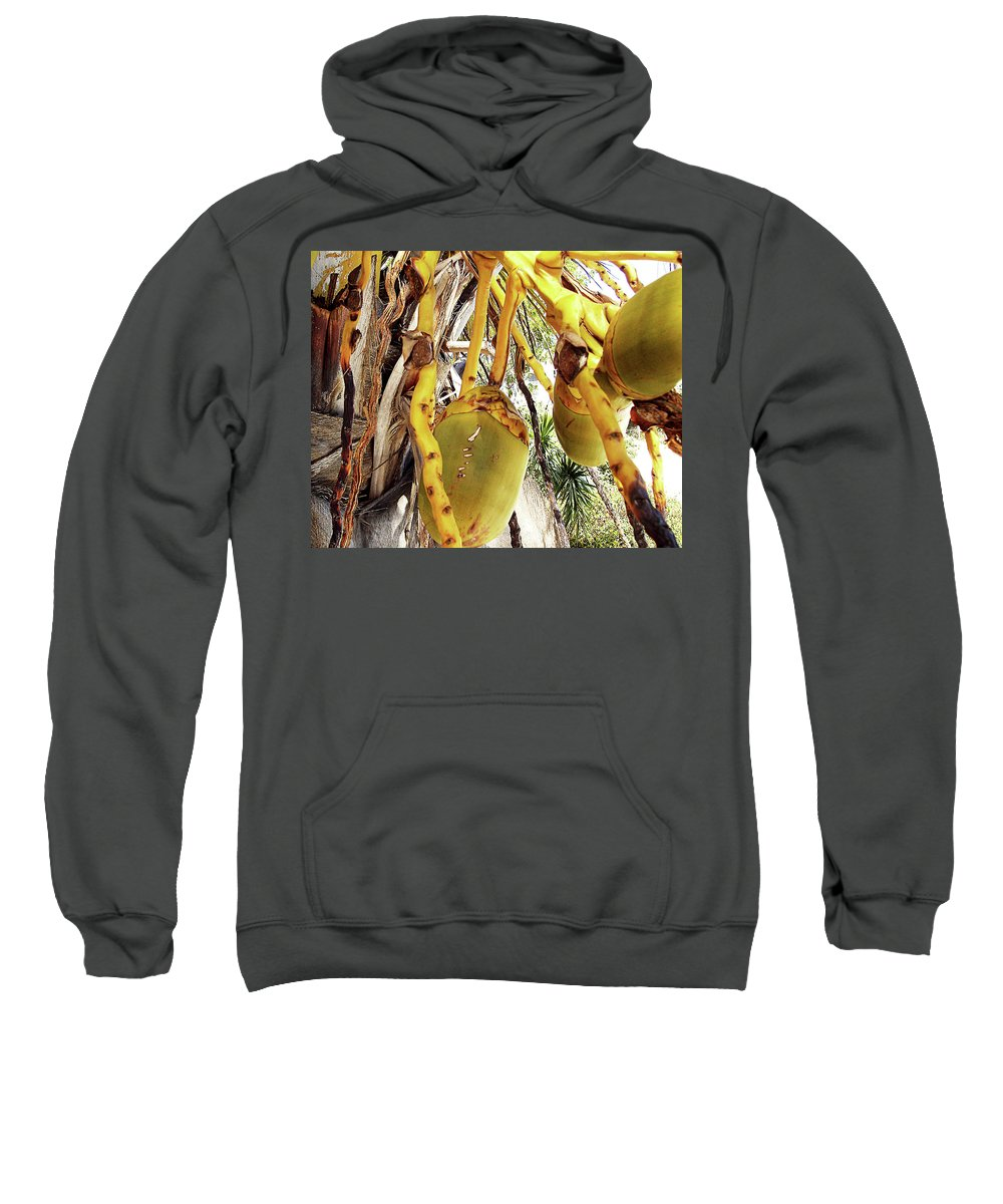 Florida Sweatshirt featuring the photograph Sanibel Coconuts Gp by Chris Andruskiewicz