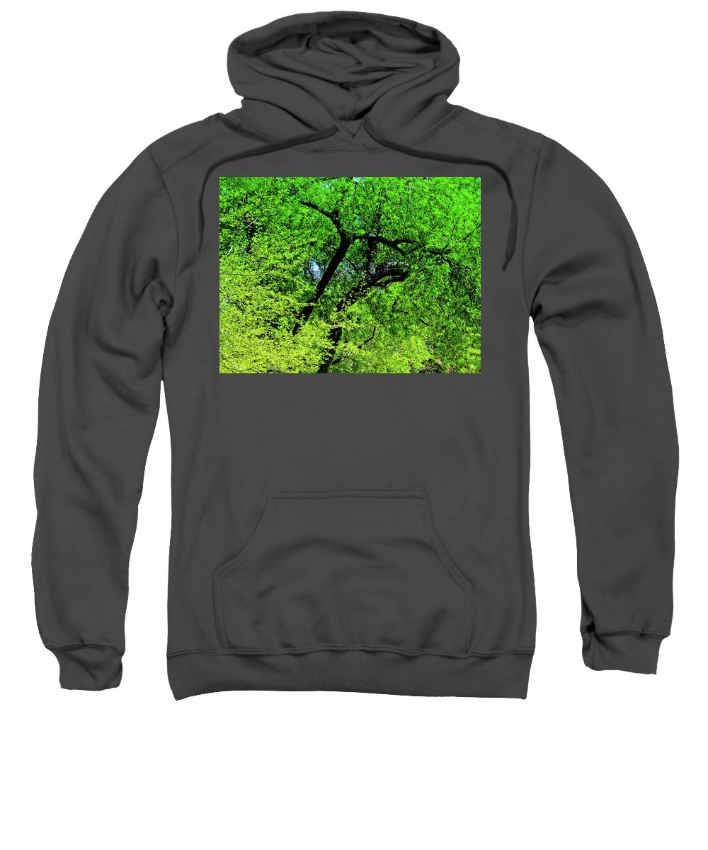 Nature Sweatshirt featuring the photograph Sapes In Nature by Frances Hattier