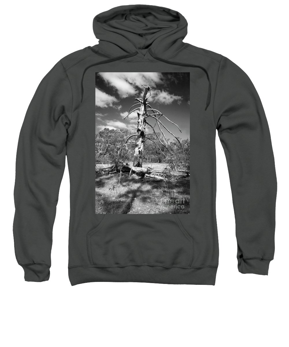 Decay Photographs Hooded Sweatshirts T-Shirts