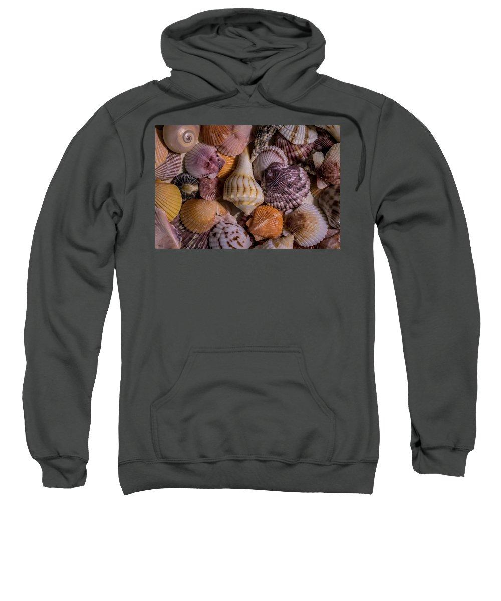 Sea Shells Sweatshirt featuring the photograph Sea Bones 20 by Robbie Lyle