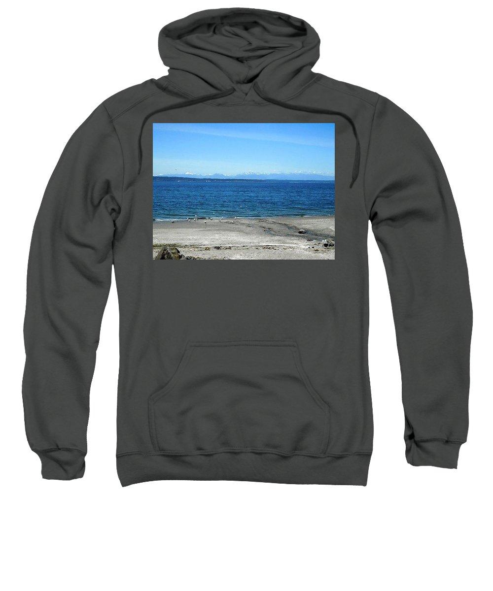 Landscape Sweatshirt featuring the photograph Sea Gulls Gather by Maro Kentros