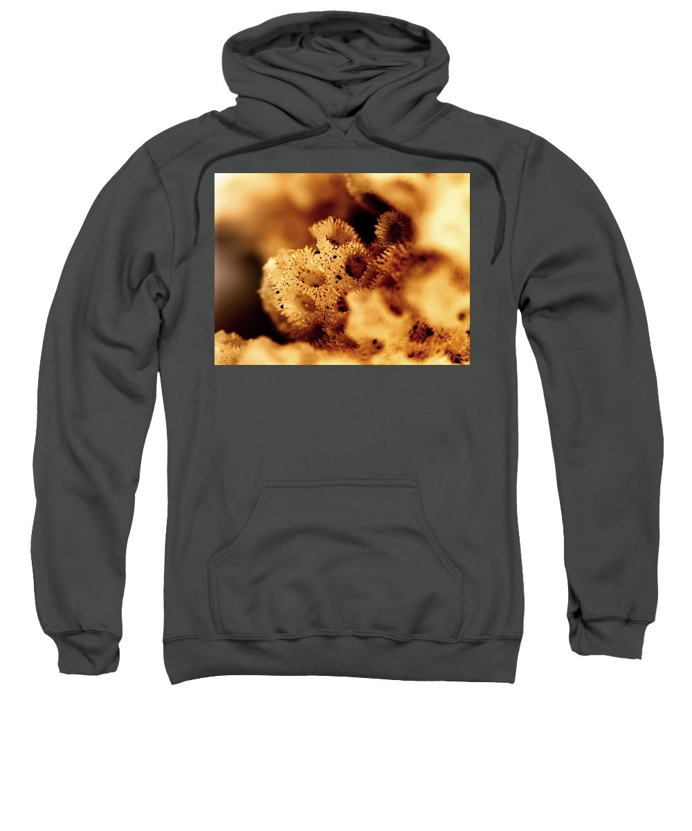 Abstract Sweatshirt featuring the photograph Sea Home by Michael Hackney
