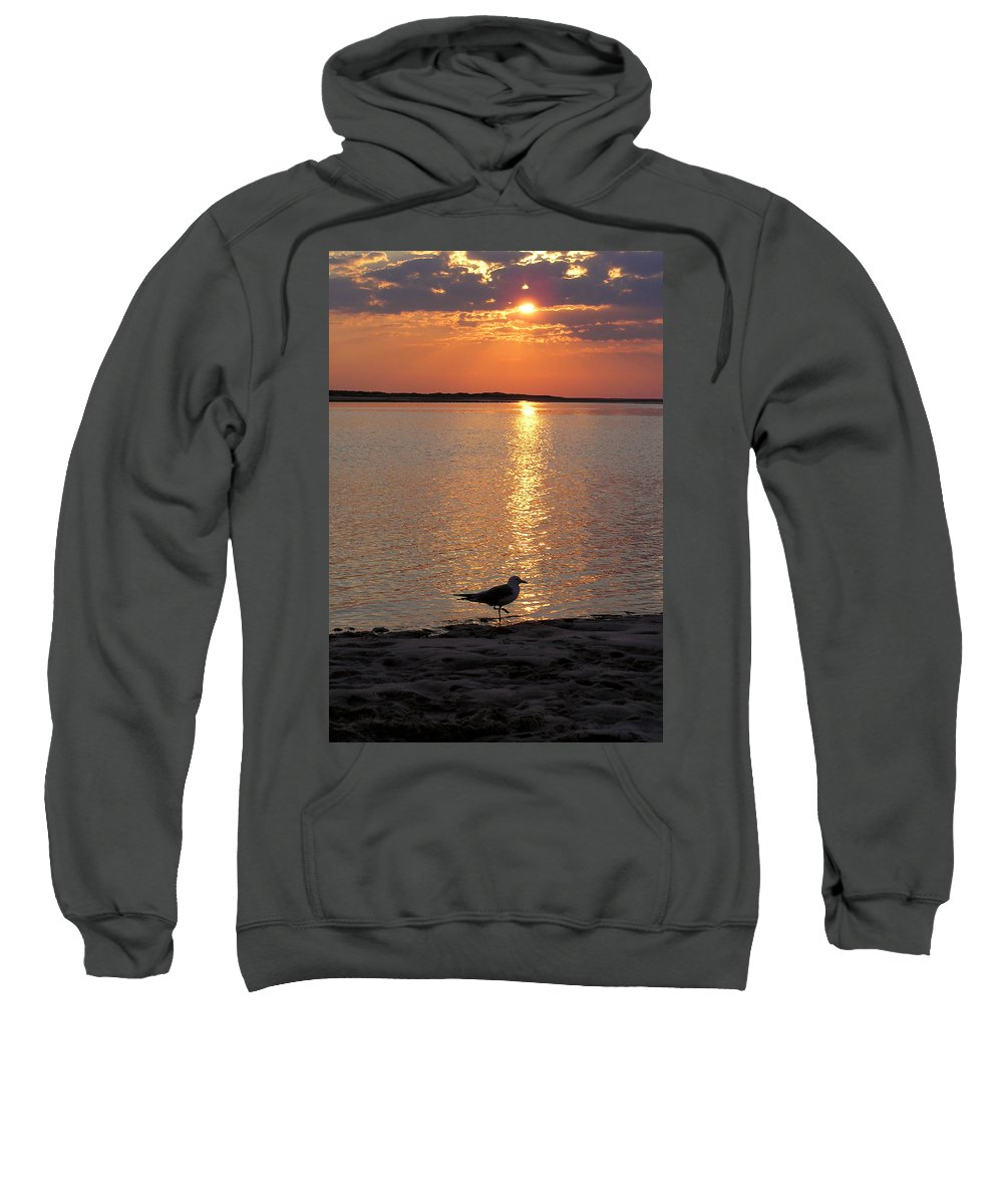 Seagull Sweatshirt featuring the photograph Seagull At Sunset by Charles Harden