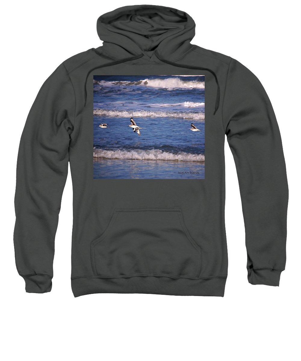 Seagulls Sweatshirt featuring the digital art Seagulls Above The Seashore by DigiArt Diaries by Vicky B Fuller
