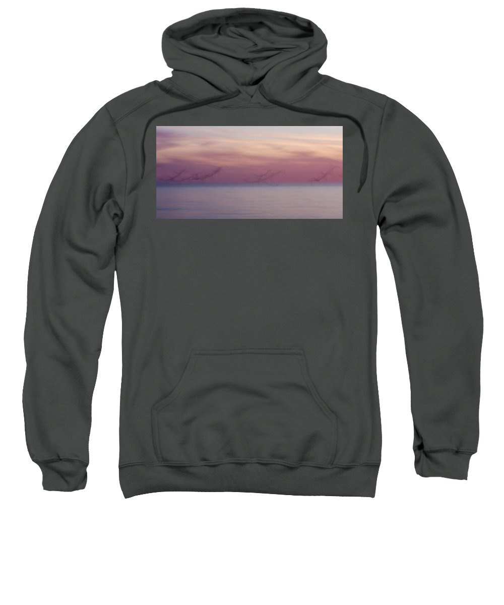 3scape Sweatshirt featuring the photograph Seagulls In Motion by Adam Romanowicz