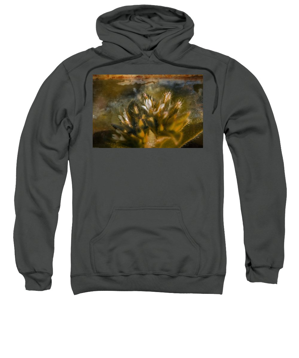 Photo Art Sweatshirt featuring the photograph Searching For An Identity by Mick Anderson
