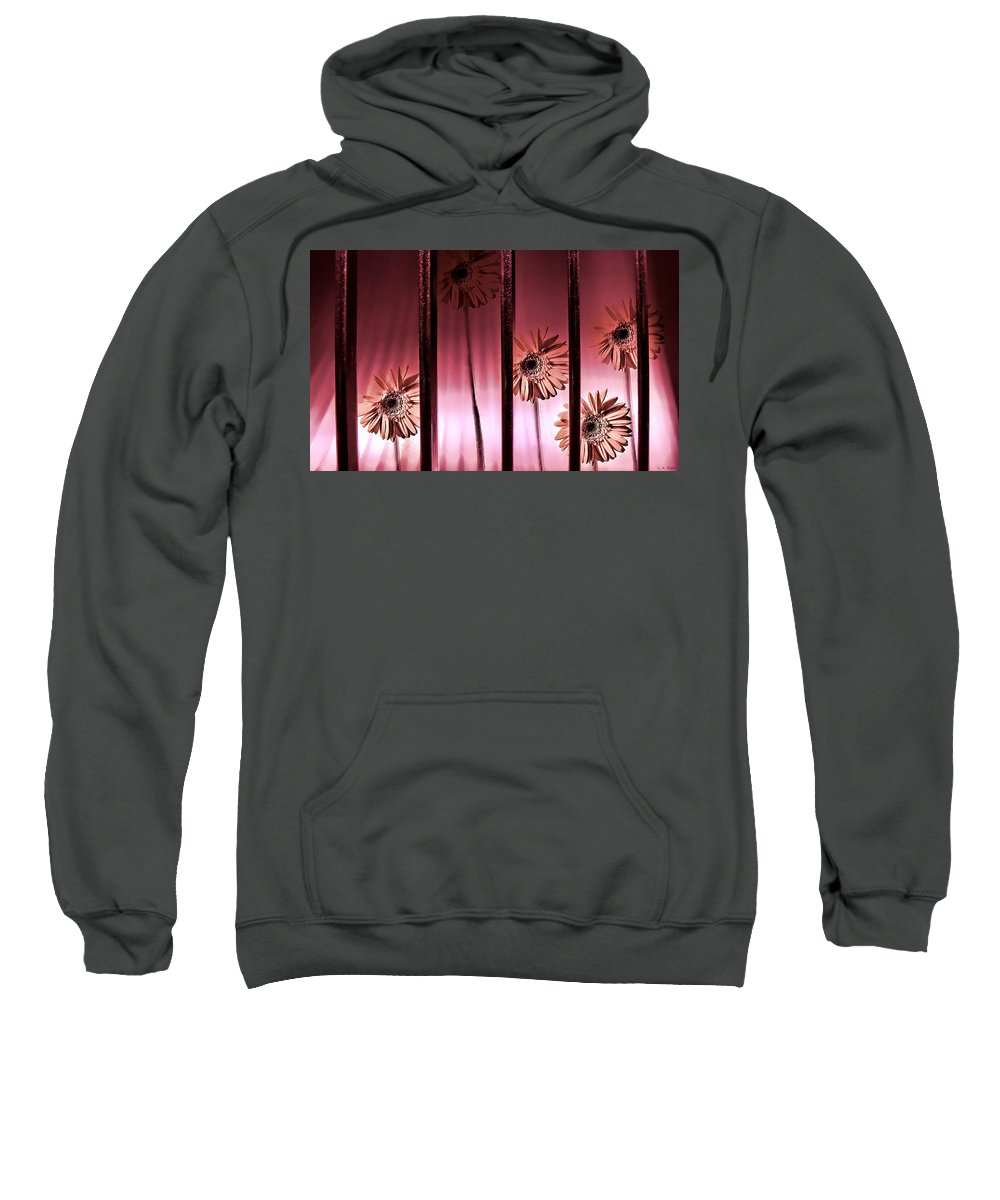 Lauren Radke Sweatshirt featuring the photograph Secrets by Lauren Radke