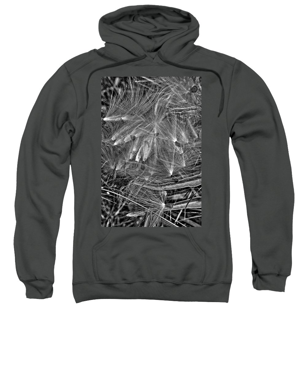 Black And White Sweatshirt featuring the photograph Seeds by Daniel Koglin