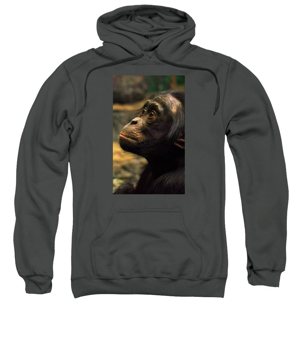 Bonobo Sweatshirt featuring the photograph Self Reflection by Michelle Neidigh