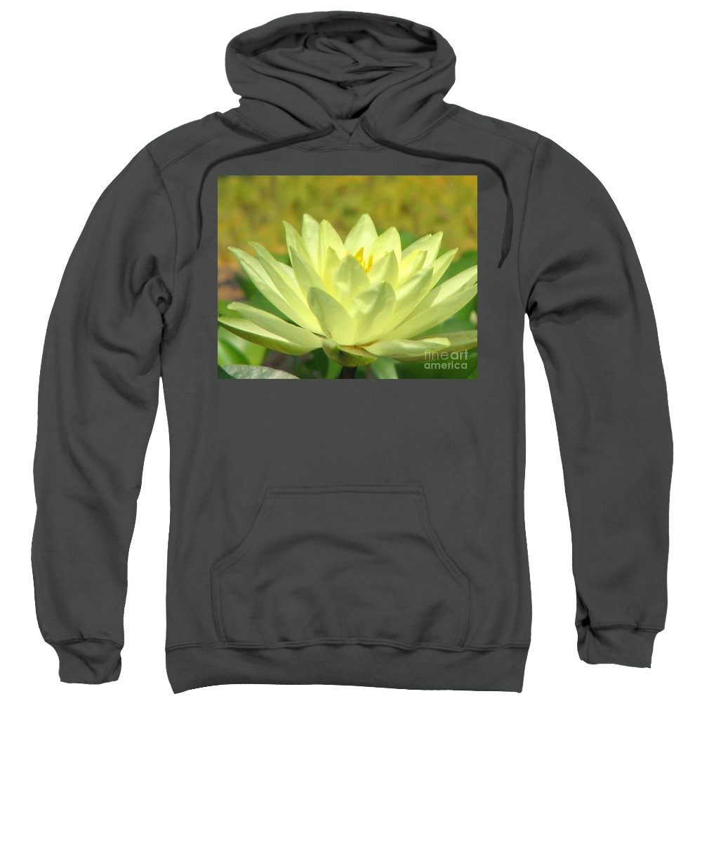 Lillypad Sweatshirt featuring the photograph Shades by Amanda Barcon
