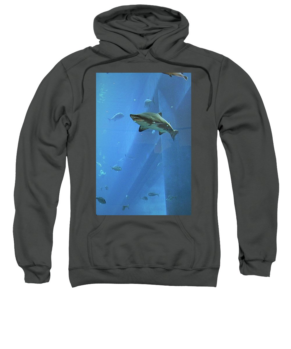 Aquarium Sweatshirt featuring the photograph Sharknado In Dubai by Mario MJ Perron