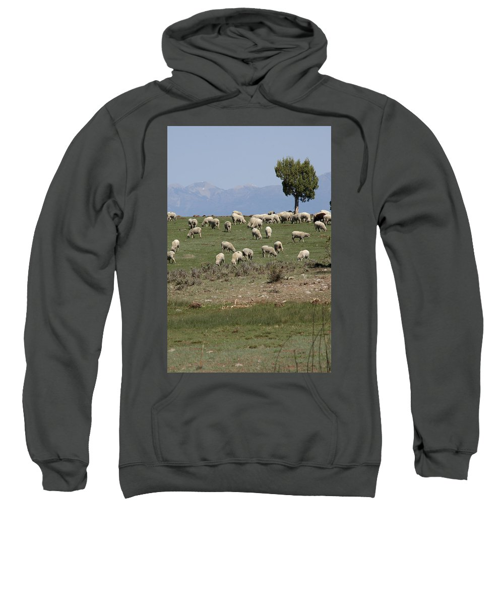 Sheep Sweatshirt featuring the photograph Sheep Country by Jerry McElroy