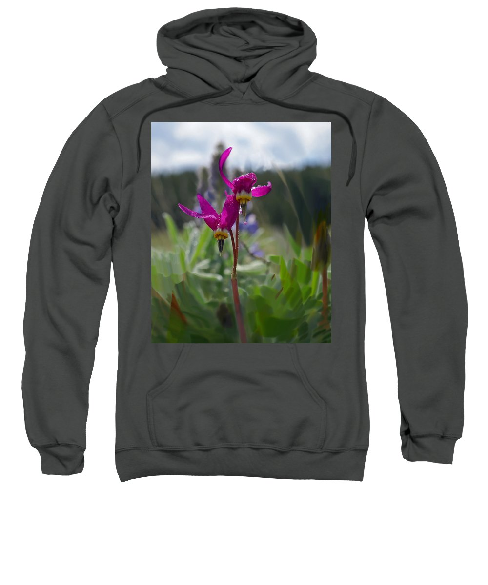 Wild Flower Sweatshirt featuring the photograph Shooting Star by Heather Coen