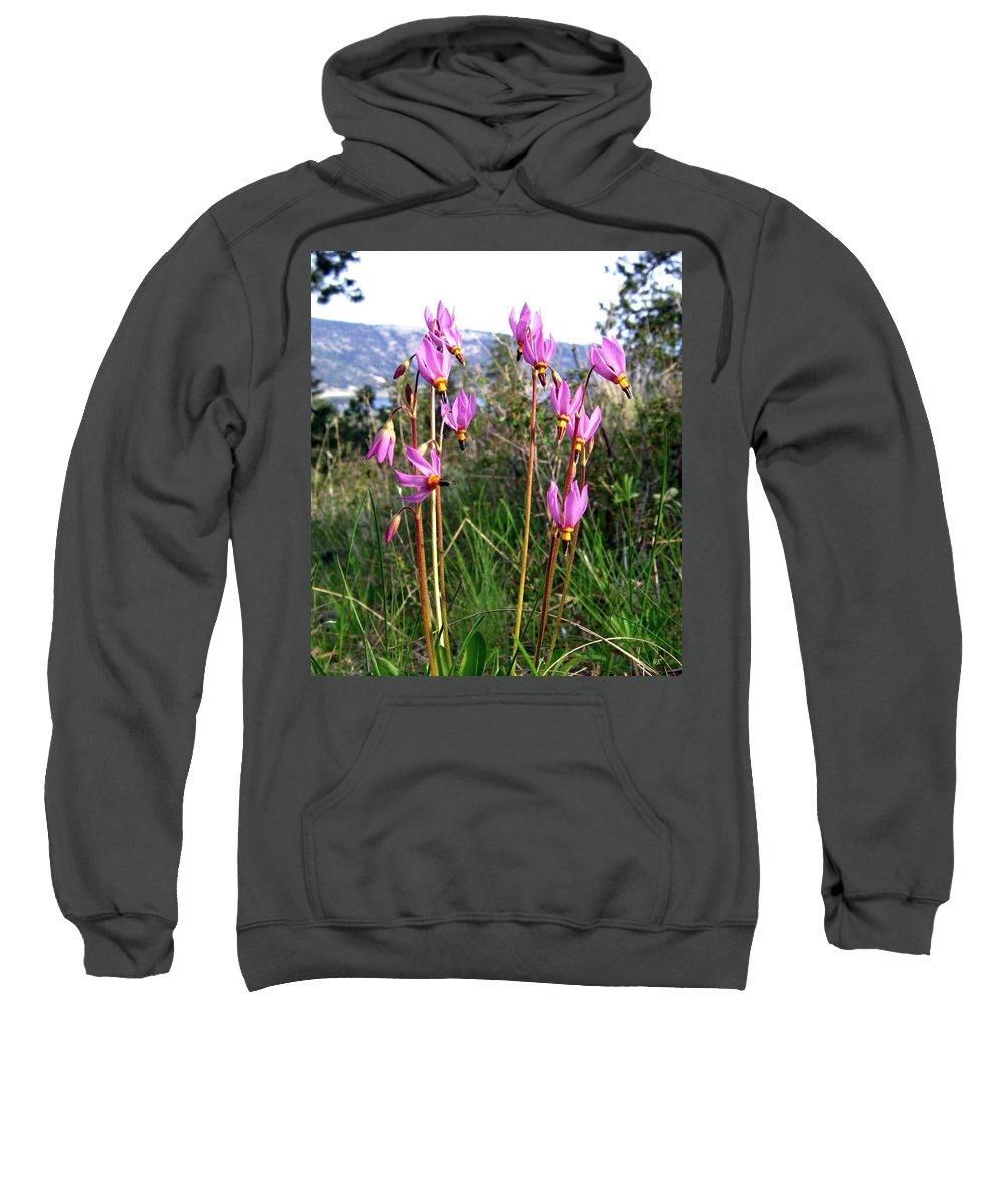 Shooting Stars Sweatshirt featuring the photograph Shooting Stars by Will Borden