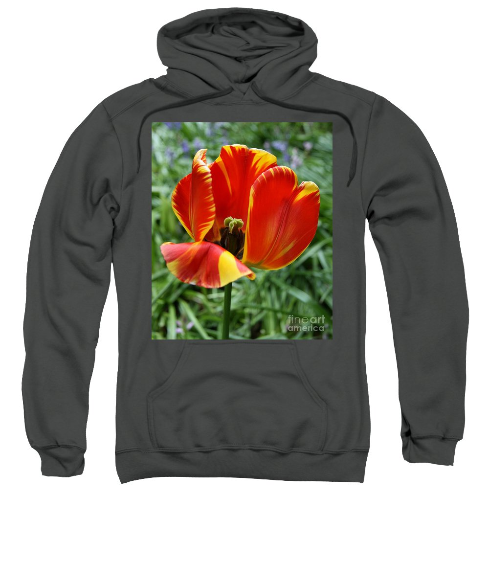 Tulip Sweatshirt featuring the photograph Show Your Heart by Christiane Schulze Art And Photography