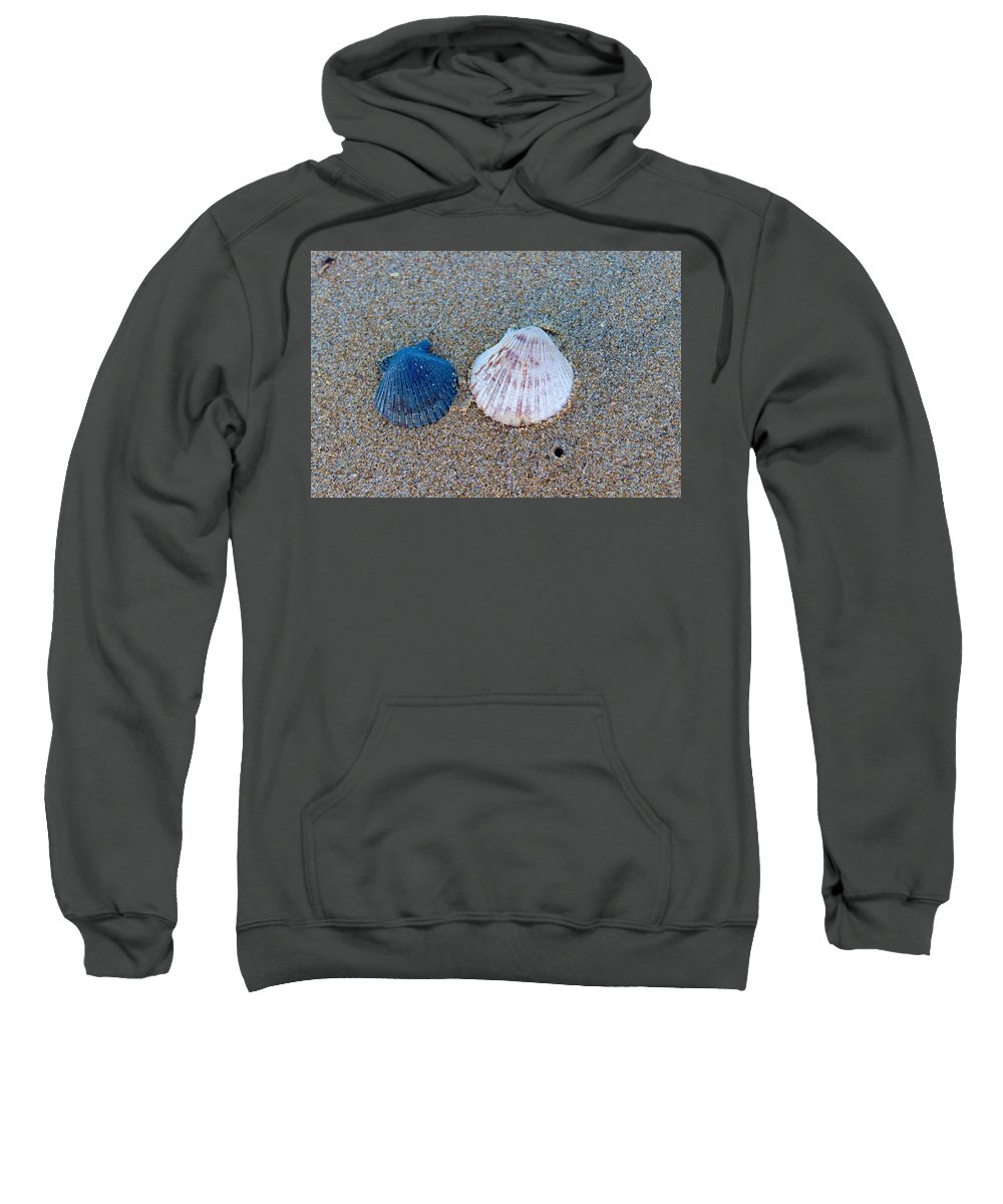 Shells Sweatshirt featuring the photograph Side By Side Shells by Brian Eberly