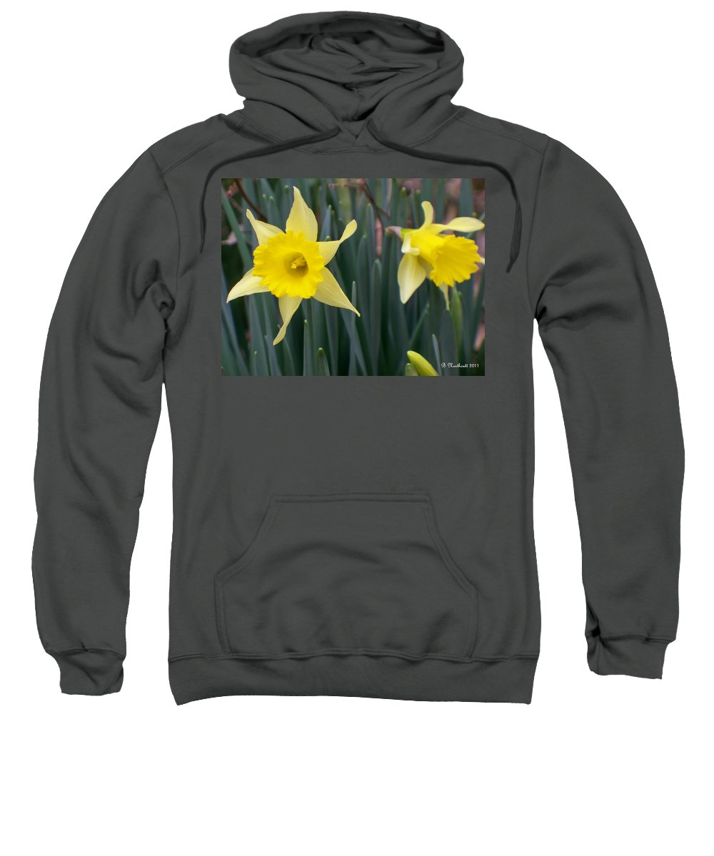 Daffodil Sweatshirt featuring the photograph Sign Of Spring by Betty Northcutt
