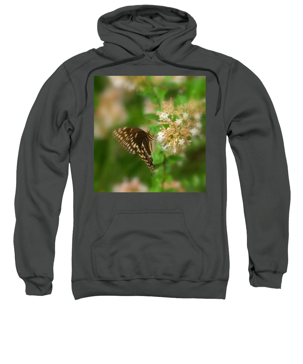 Sign Of Spring Sweatshirt featuring the photograph Sign Of Spring by Susanne Van Hulst