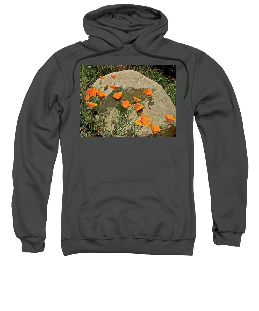 Poppy Sweatshirt featuring the photograph Signs Of Spring by Diana Hatcher