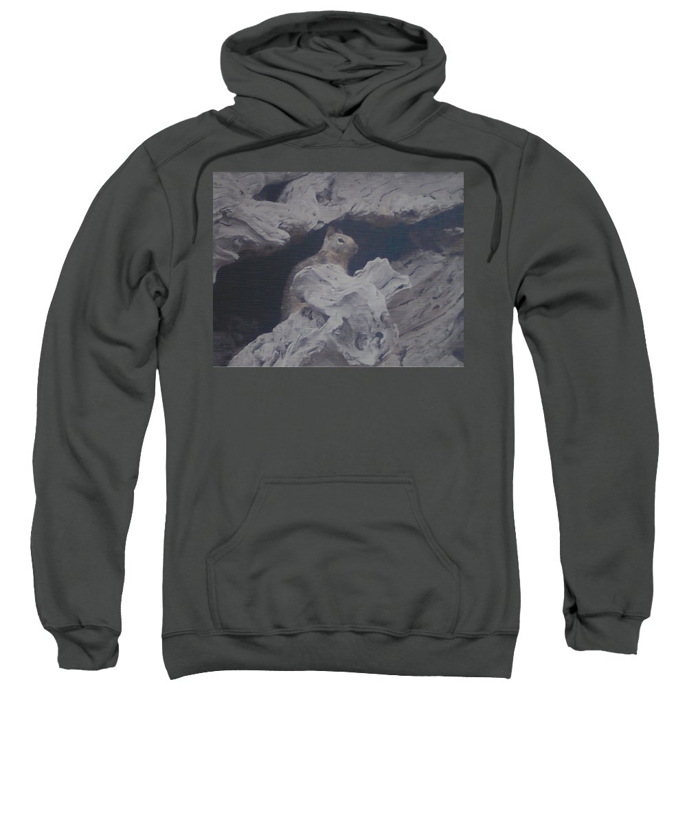 Squirrel Sweatshirt featuring the photograph Silent Observer by Pharris Art