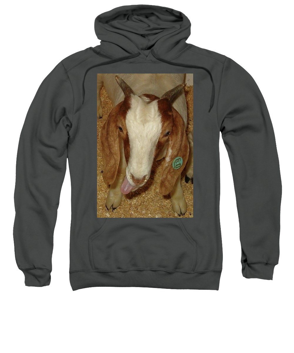 Goat Sweatshirt featuring the photograph Silly 60 by Sara Raber
