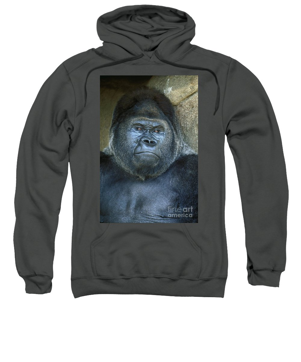 Male Sweatshirt featuring the photograph Silver Back by Paul W Faust - Impressions of Light