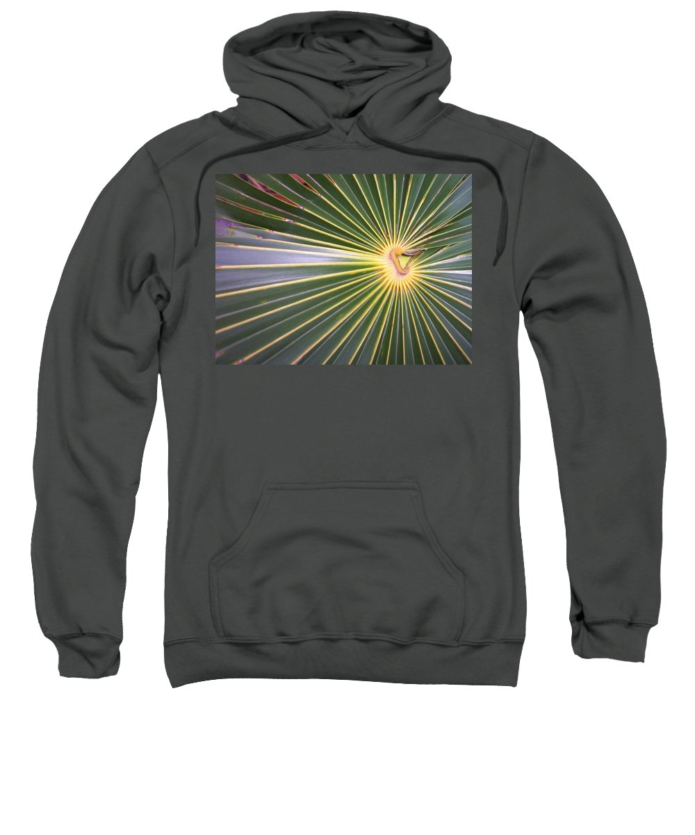 Nature Sweatshirt featuring the photograph Silver Palm by Kimberly Mohlenhoff