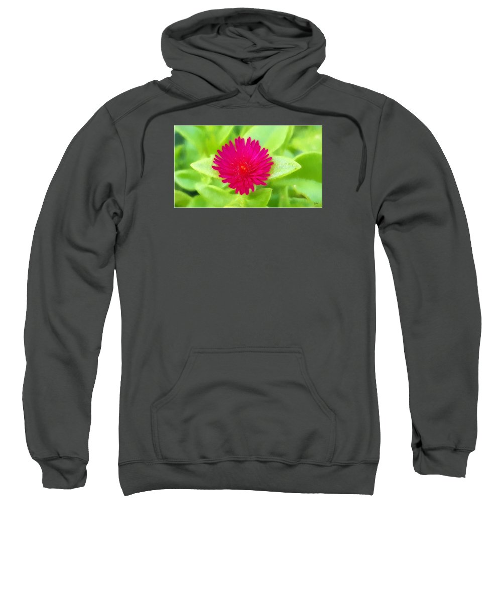 Floral Sweatshirt featuring the digital art Simple Magenta In A Garden Of Green by Edier C