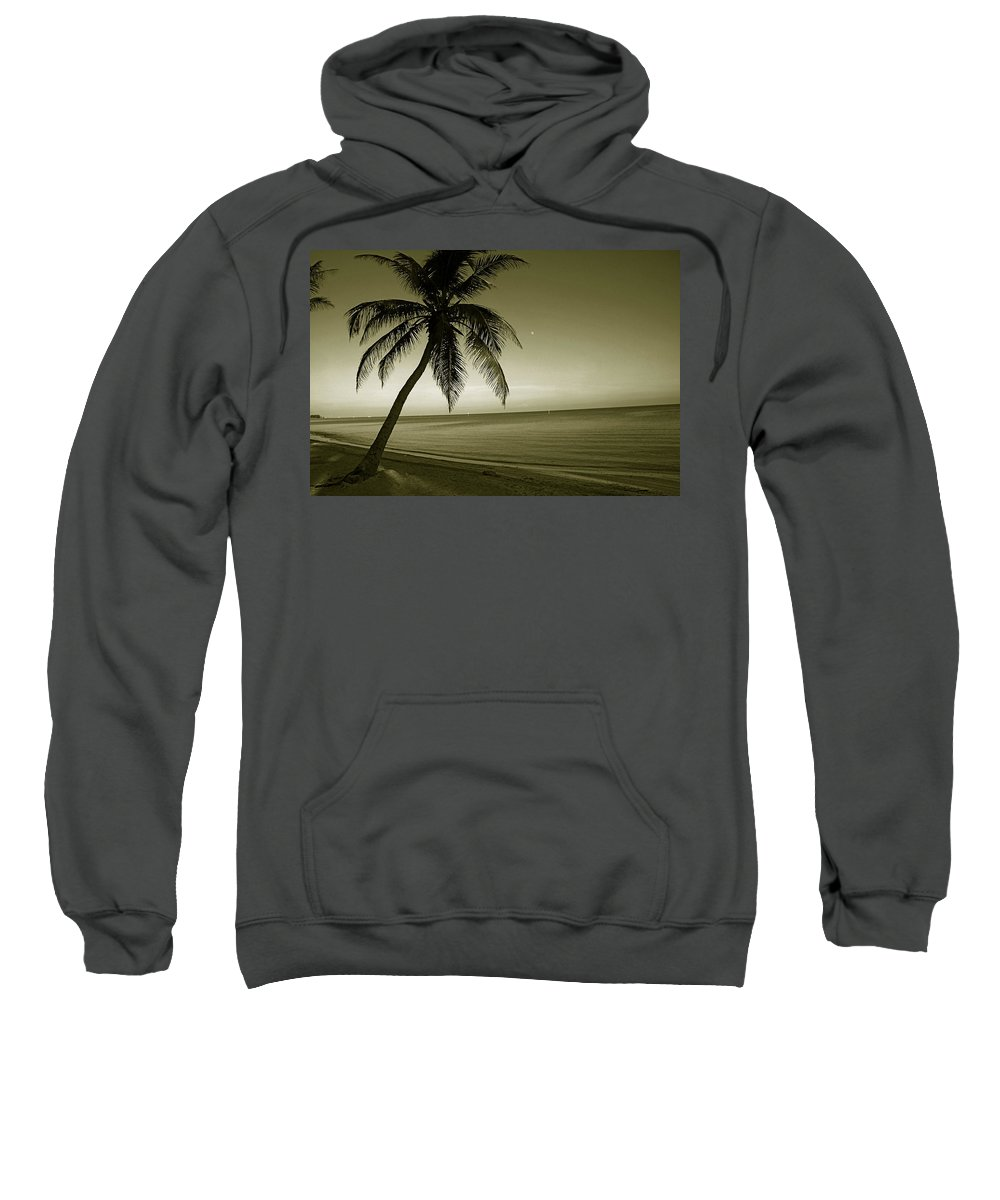 Palm Tree Sweatshirt featuring the photograph Single Palm At The Beach by Susanne Van Hulst